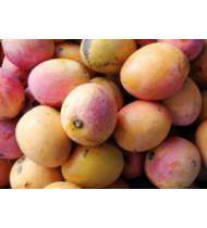 Mango Ciruela